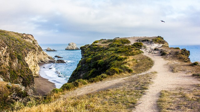 Point Reyes: Hiking & Oysters