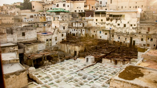 Tanneries & Market in Fes